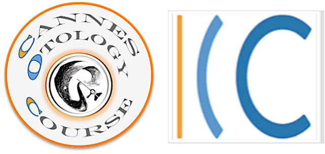 Logo coc chc 2